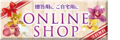 go to onlineshop